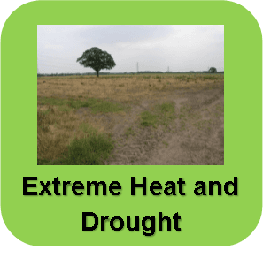 Extreme Heat and Drought