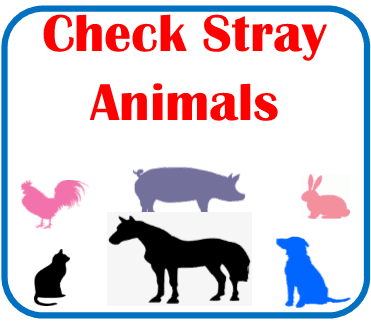 Check Stray Dogs Page Click here