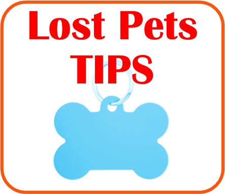 Lost Pet Tips Click here
